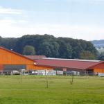 Reitzentrum Bega Ohne Pferde geht's nicht… Seit 490 Jahren auf Hof Petig im ländlich schönen Bega.